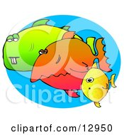 Weird Group Of Diverse Fish Swimming In The Sea Clipart Graphic Illustration