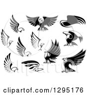 Clipart Of Black And White Bald Eagles Royalty Free Vector Illustration