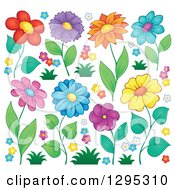 Clipart of Colorful Spring Flower Blooms and Blossoms - Royalty Free Vector Illustration by visekart