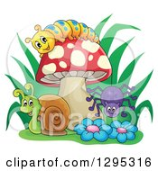 Happy Cartoon Caterpillar Snail And Spider By A Mushroom And Flowers