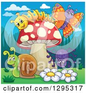 Clipart Of A Happy Cartoon Caterpillar Butterfly Snail And Spider By A Mushroom And Flowers Royalty Free Vector Illustration by visekart