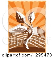 Clipart Of A Retro Woodcut Seedling Plant And Mountains Against Orange Sunshine Rays Royalty Free Vector Illustration by patrimonio