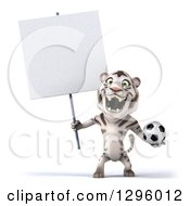 Clipart Of A 3d White Tiger Roaring Holding A Soccer Ball And A Blank Sign Royalty Free Illustration