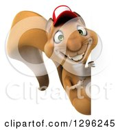 Clipart Of A 3d Squirrel Wering A Baseball Cap And Pointing Around A Sign Royalty Free Illustration