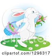 Clipart Of A Cute White Easter Bunny Rabbit Hopping With Tulips And A Basket Of Eggs Over Blue And White Royalty Free Vector Illustration by Pushkin