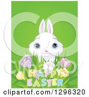 Cute White Bunny Rabbit With Blue Eyes Looking Over Spring Crocus Flowers And Happy Easter Text On Green