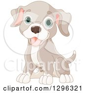 Clipart Of A Cute Sitting Happy Tan And Brown Puppy Dog With Blue Eyes Royalty Free Vector Illustration