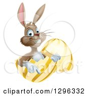 Clipart Of A Happy Brown Easter Bunny Sitting And Pointing From A Gold And Yellow Egg Shell Royalty Free Vector Illustration