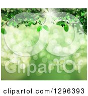 Clipart Of A 3d Green Vine Over Bokeh Flares With Sunshine Royalty Free Illustration by KJ Pargeter