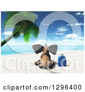 Rear View Of A 3d Elephant Sitting With A Suitcase On A Tropical Beach