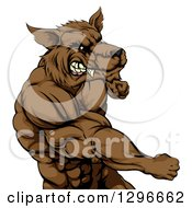 Clipart Of A Tough Vicious Muscular Brown Wolf Man Punching Royalty Free Vector Illustration
