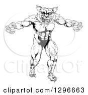 Clipart Of A Black And White Muscular Wolf Mascot Standing In A Threatening Stance Royalty Free Vector Illustration