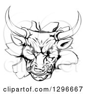 Clipart Of A Vicious Snarling Aggressive Black And White Bull Breaking Through A Wall Royalty Free Vector Illustration