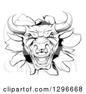 Clipart Of A Snarling Aggressive Black And White Bull Breaking Through A Wall Royalty Free Vector Illustration