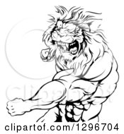 Black And White Tough Angry Muscular Lion Man Punching And Roaring
