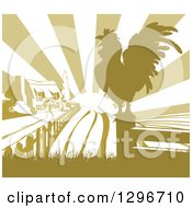 Sunrise Over A Green Farm House A Silhouetted Crowing Rooster And Fields