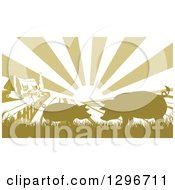 Clipart Of A Sunrise Over A Brownish Green Farm House With Silhouetted Pigs And Fields Royalty Free Vector Illustration
