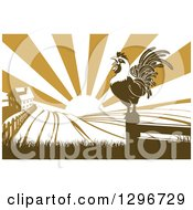 Brown Crowing Rooster On A Post Against A Sunrise Over A Farm House