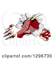 Clipart Of A Fierce Red Dragon Mascot Head Shredding Through A Wall Royalty Free Vector Illustration