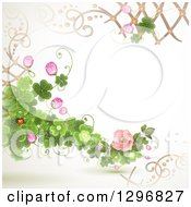 Clipart Of A Floral Rose Wedding Background With Shamrock Clovers Lattice And A Ladybug Royalty Free Vector Illustration