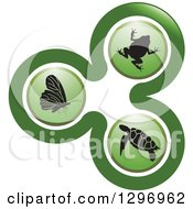 Clipart Of A Green Biology Logo Of A Frog Sea Turtle And Butterfly In Circles Royalty Free Vector Illustration