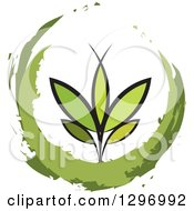 Clipart Of A Seedling Plant In A Painted Circle Royalty Free Vector Illustration
