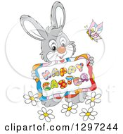 Clipart Of A Cartoon Happy Gray Bunny Holding A Happy Easter Sign With A Butterfly And Flowers Royalty Free Vector Illustration