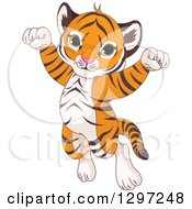 Cute Animal Clipart Of An Adorable Happy Baby Tiger Cub Jumping And Cheering Royalty Free Vector Illustration by Pushkin
