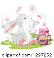 Adorable Gray And White Bunny Rabbit Watching Butterflies And Sitting With An Easter Basket