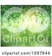 Clipart Of A Background Of Green Vines Flares And Sunshine Royalty Free Illustration by KJ Pargeter