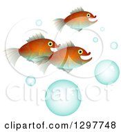 Fish With Bubbles On White