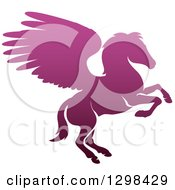 Clipart Of A Silhouetted Gradient Purple Rearing Pegasus Winged Horse Royalty Free Vector Illustration by AtStockIllustration
