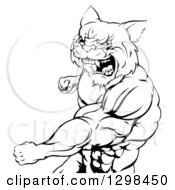 Black And White Tough Angry Muscular Wildcat Man Punching And Roaring