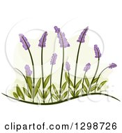 Clipart Of Lavender Flowers And Leaves Royalty Free Vector Illustration by BNP Design Studio