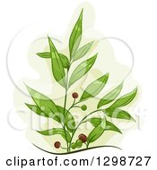 Clipart Of A Tea Tree Plant With Fruits Royalty Free Vector Illustration