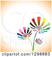 Clipart Of Three Vibrant Colorful Flowers Over White And Orange With Text Space Royalty Free Vector Illustration by ColorMagic