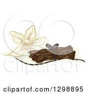Clipart Of A Vanilla Flower And Stalks Royalty Free Vector Illustration