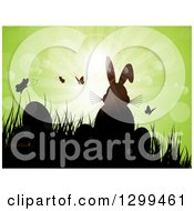 Silhouetted Easter Bunny With Eggs Butterflies And Grass Against Green Magical Sunshine And Flares