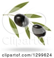 3d Branch With Two Black Olives And A Shadow
