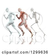 Clipart Of A 3d Anatomical White Man Muscle Man And Skeleton Running On White Royalty Free Illustration