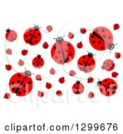 Clipart Of A Background Of A Ladybugs On White Royalty Free Illustration