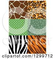 Clipart Of Seamless Animal Print Designs Royalty Free Vector Illustration