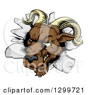 Clipart Of A Brown Snarling Ram Breaking Through A Wall Royalty Free Vector Illustration