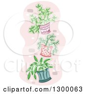 Clipart Of Potted Plants Hung On A Wall Royalty Free Vector Illustration