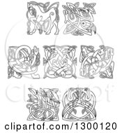 Clipart Of Lineart Celtic Knot Animals Royalty Free Vector Illustration