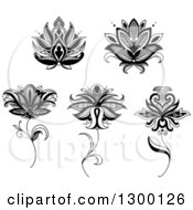 Clipart Of A Black And White Henna And Lotus Flowers 5 Royalty Free Vector Illustration