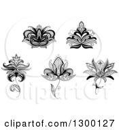 Clipart Of Black And White Henna And Lotus Flowers Royalty Free Vector Illustration