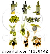 Clipart Of Olive And Oil Designs Royalty Free Vector Illustration
