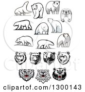 Clipart Of Polar Bear Designs Royalty Free Vector Illustration by Seamartini Graphics