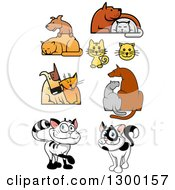 Cartoon Cat And Dog Designs